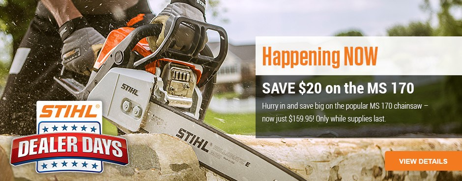 Save $20 on MS 120 Chainsaw